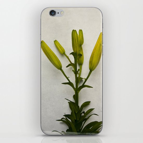 Botanical Lily No. 7733 iPhone & iPod Skin