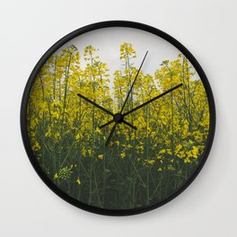 Rape flowers Wall Clock