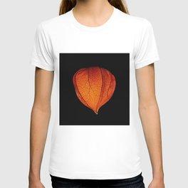 Chinese Lantern Pod - Colour Macro T-shirt