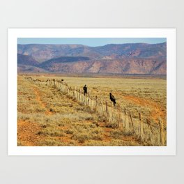 Wedgetail Eagles on a Fence, Outback Australia Art Print