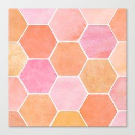 Desert Mood Hexagon Print Canvas Print