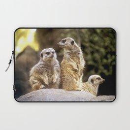 Act Natural Meerkats Laptop Sleeve