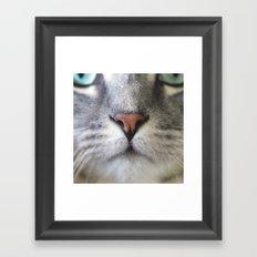 Symmetriclay Framed Art Print