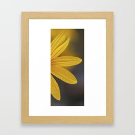 Hiding In Yellow Framed Art Print
