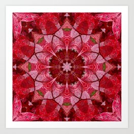 Red autumn leaves kaleidoscope - Cranberrybush Viburnum Art Print