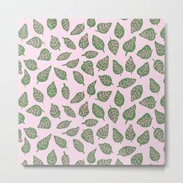 Fittonia Leaves Metal Print