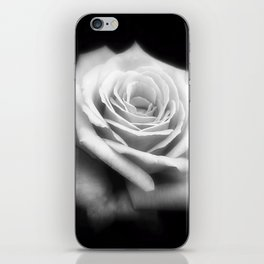 Pink Roses in Anzures 4 Dark iPhone Skin