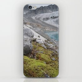 AK Pennyroyal Glacier iPhone Skin