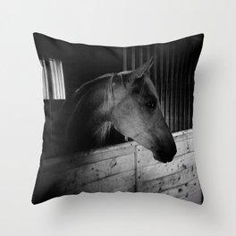 Nifty Throw Pillow