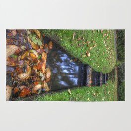 Autumn Waters Rug