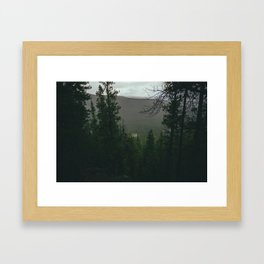 Overcast Forest Framed Art Print