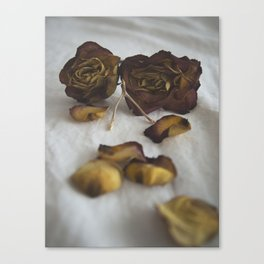 Wishbone and Roses Canvas Print