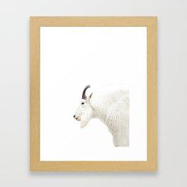 NORDIC MOUNTAIN GOAT Framed Art Print