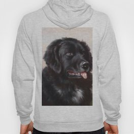 The Newfoundland Dog - Carl Reichert Hoody