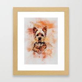 Yorkshire Terrier Framed Art Print
