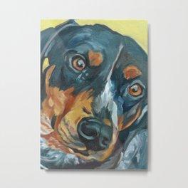 Sassy Girl Banjo Dog Portrait Metal Print