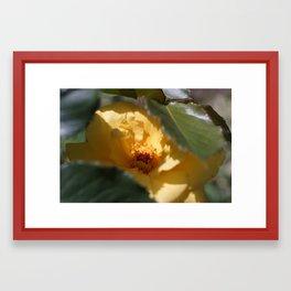 Hide Framed Art Print