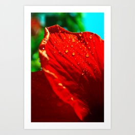 DROPS ON RED Art Print