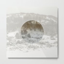 Snowing Forest Metal Print