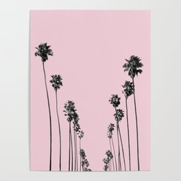 Palm trees 13 Poster