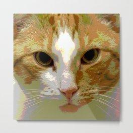 Red white cat Metal Print