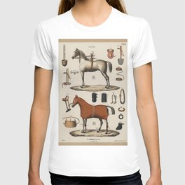 Jockey Horse Equipment Outfit Vintage Scientific Encyclopedia Illustration T-shirt