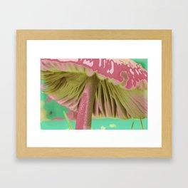 Mycelium Dream Framed Art Print
