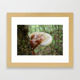 Reishi 2 Framed Art Print