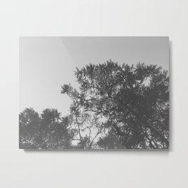 Black & White Tree Tops Metal Print