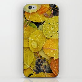 Water droplets on autumn aspen leaves iPhone Skin