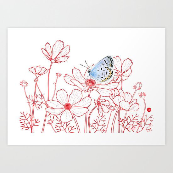 Cosmos and Butterfly Art Print