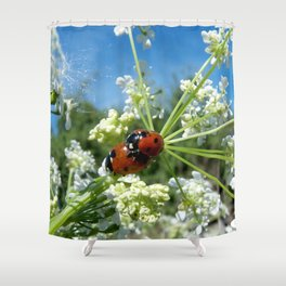 funny ladybug luck at love playing in spring Shower Curtain