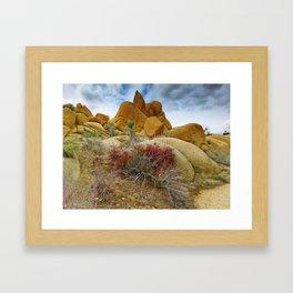 Jumbo Rocks Framed Art Print