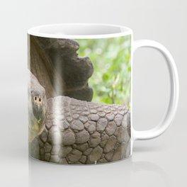 Giant turtle Coffee Mug