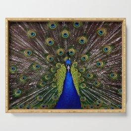 Peacock bird plumage Serving Tray