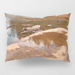 Swallow Falls Pillow Sham