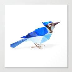 Blue Jay. Canvas Print