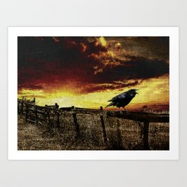 Sunset Crow on Country Fence Modern Country A396 Art Print