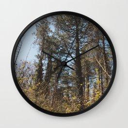 A Forest Walk Wall Clock