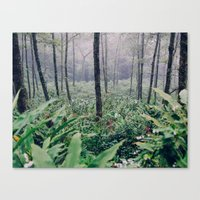 vietnam Canvas Prints featuring Vietnam by Steven J Williams
