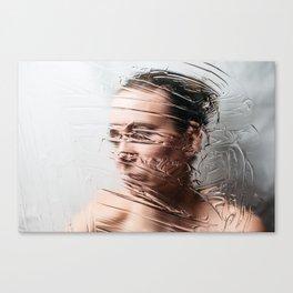 Through The Screen Canvas Print