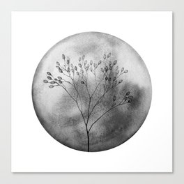 Autumn in the meadow, bw Canvas Print