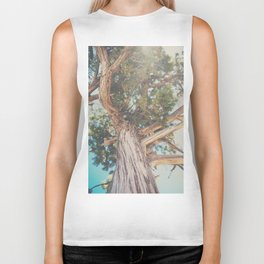 looking up through the leaves of the Juniper Tree ... Biker Tank