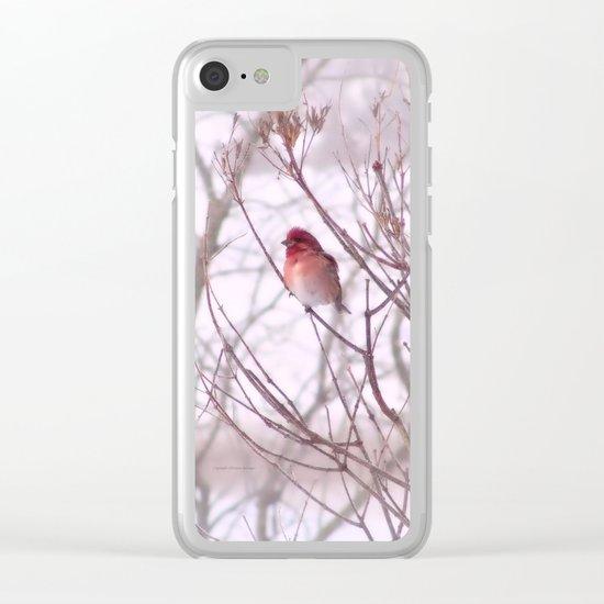 Purple Finch Clear iPhone Case