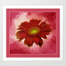 framed pictures -70- Art Print