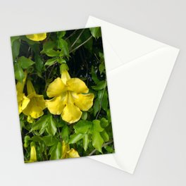 Cat's Claws Vines Stationery Cards