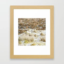 Under the Winter's Sun Framed Art Print
