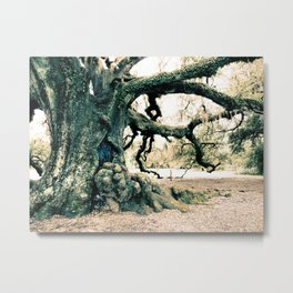 Oak Tree of Life New Orleans Louisiana Old Pirate French Forest Metal Print