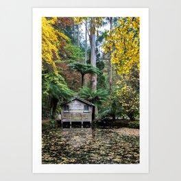 Alfred Nicholas Gardens Boathouse Art Print
