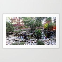 Quiet Pond Art Print